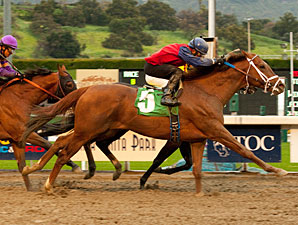 Smiling Tiger wins the 2011 San Carlos.