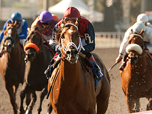 Smiling Tiger wins the 2011 Triple Bend.