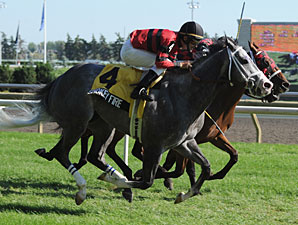 Smokey Fire wins the 2010 Play the King Stakes.