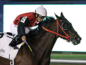 Snappy Girl wins the 2014 Tellike Stakes.