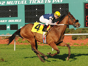 Sneaking Uponyou wins the 2010 Turf Dash.