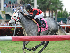 Snow Top Mountain wins the 2012 Suwannee River.