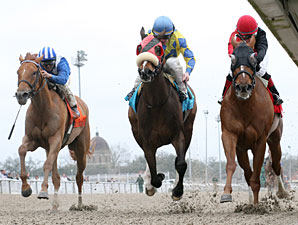 Snuggs and Kisses (right) wins the 2013 Bayou Handicap.