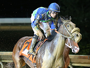 So Many Ways wins the 2013 Charles Town Oaks.
