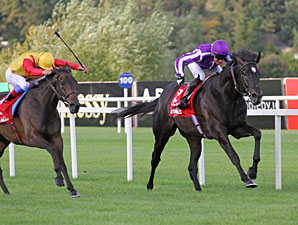 So You Think wins the 2011 Irish Champion Stakes.