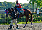 Belmont Stakes News Update for June 2, 2014