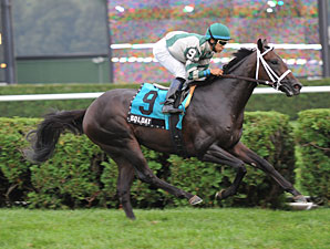 Soldat wins the 2010 With Anticipation Stakes.