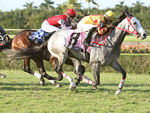 Soldier's Dancer wins the 2009 Bonnie Heath Turf Cup Handicap.