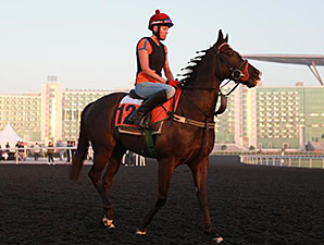 Sole Power at Meydan March 24, 2014.