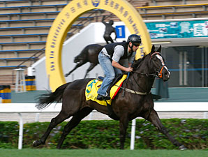Sole Power in Hong Kong, December 7, 2011.
