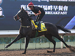 Sole Power - Hong Kong 2013