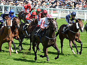 Sole Power wins the 2014 Kings Stand Stakes