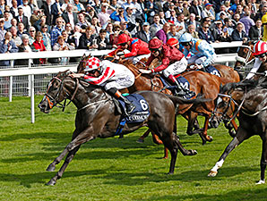 Sole Power wins the 2014 Nunthorpe Stakes.
