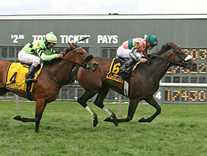 Somali Lemonade wins the 2013 Dr. James Penny Memorial Handicap.