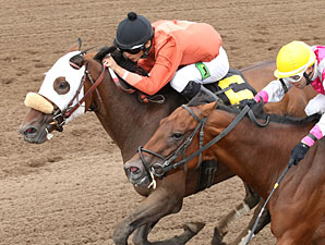 Somerset Swinger wins the Belle Notte Minnesota Distaff Championship.