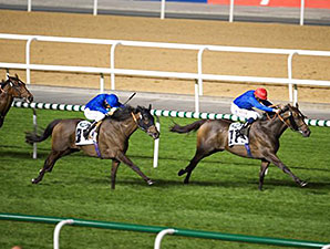 Songcraft wins the 2015 Range Rover Trophy Handicap on Feb 12.