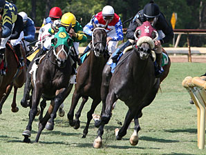 Soonerette wins the 2011 Happy Ticket.