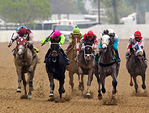 Souper Miss wins the 2010 The Peach Of It.