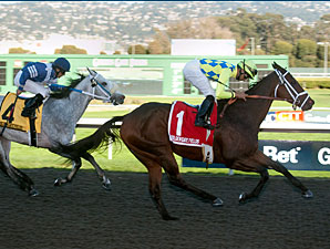 Sourdough Sam wins the 2011 Oakland.