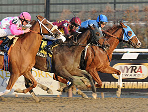 Spa City Fever wins the 2011 Alex M. Robb.