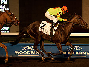 Spadina Road wins the 2014 Deputy Minister Stakes.