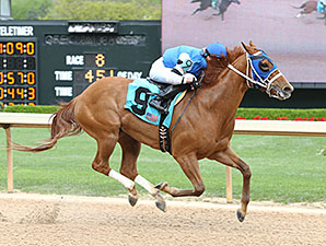 Spring Included wins the 2015 Carousel Stakes.