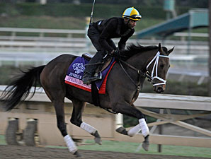 Spring In the Air wroks at Santa Anita 10/29/2012.