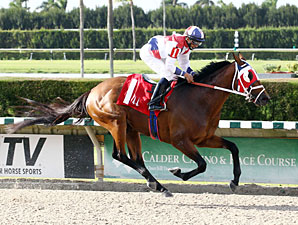 Sr. Quisqueyano wins the 2013 Calder Derby.