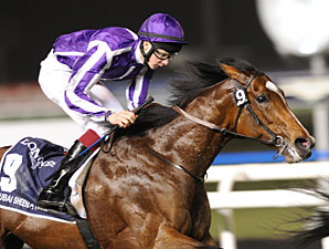 St Nicholas Abbey in the Dubai Sheema Classic.