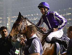 St Nicholas Abbey wins the 2013 Dubai Sheema Classic.