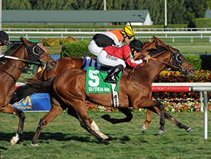 Star Channel wins the 2014 Florida Sunshine Millions Turf.