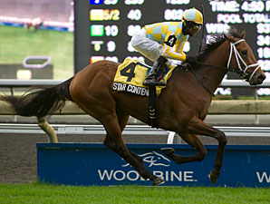 Star Contender wins the 2012 Cup and Saucer.