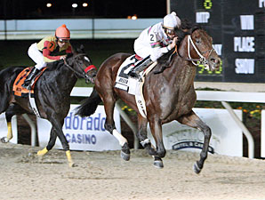 Super Saturday at Fair Grounds Gets Boost