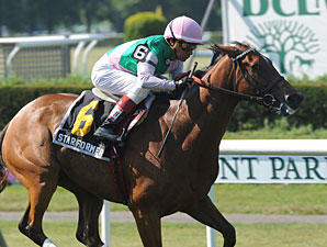 Starformer wins the 2013 New York Stakes.