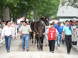 Startup Nation wins the 2014 With Anticipation Stakes.