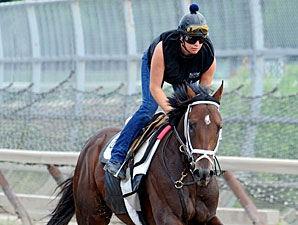 Stay Thirsty - Belmont Park, June 4, 2011.