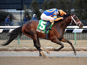 Stay Thirsty wins the 2011 Gotham.