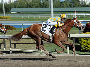 Stealcase Maiden Win - January 19, 2012.