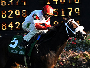 Stephanie's Kitten wins the 2011 Breeders' Cup Juvenile Fillies Turf.