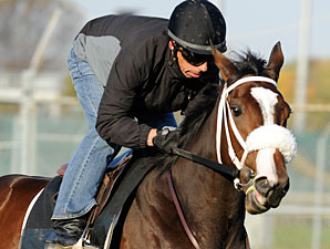 Stephanie's Kitten, Churchill Downs, Oct 29, 2011.