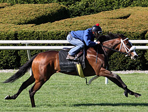 Stephanie's Kitten Keeneland Work, April 19, 2012.
