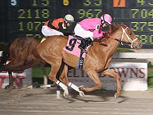 Stephanies Wildcat maiden win, March 8, 2014.