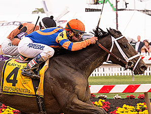 Stopchargingmaria wins the 2014 Black-Eyed Susan.