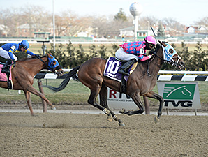 Storied Lady wins the 2014 Bay Ridge Stakes.