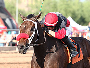 Storm Power wins the 2014 Bienvenidos Stakes.