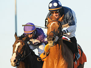 Stormy Lord wins the 2011 Ontario Jockey Club Stakes.