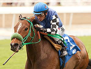 Stormy Lucy wins the Santa Barbara Stakes.