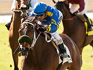 Stormy Lucy wins the Santa Ana Stakes.