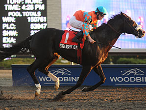 Straight Story wins the 2011 Autumn Stakes.