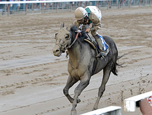 Street Life wins the 2012 Curlin Stakes.